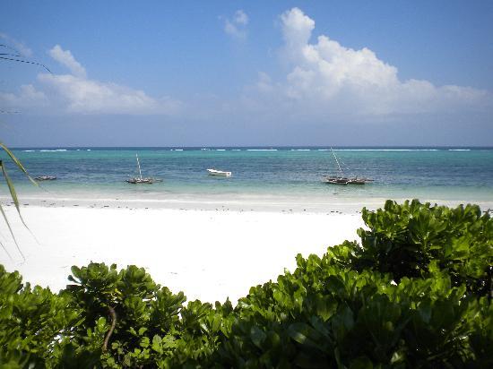Mitende EasyAfrica Club: la spiaggia