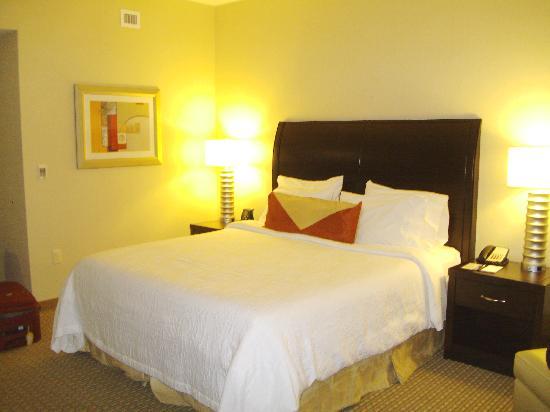 Hilton Garden Inn Arlington/Shirlington: Room