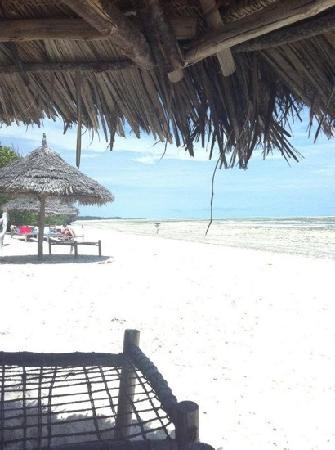 Pakachi Beach Hotel: pakachi beach