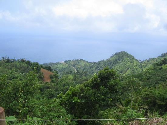Bay View Lodges: another stunning view from the drive through volcano