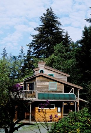 Photo of River House Haines