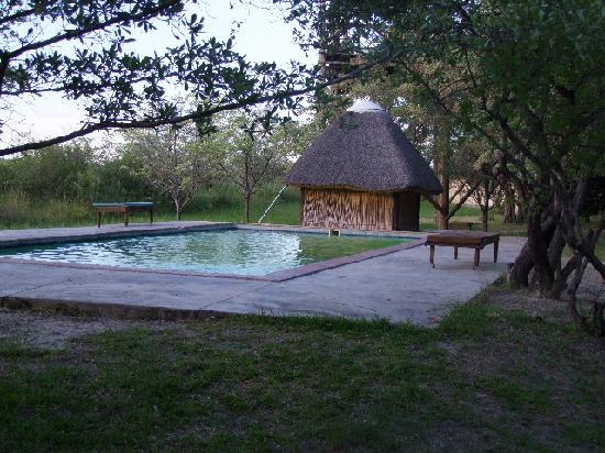 Mazambala Island Lodge: Pool area.