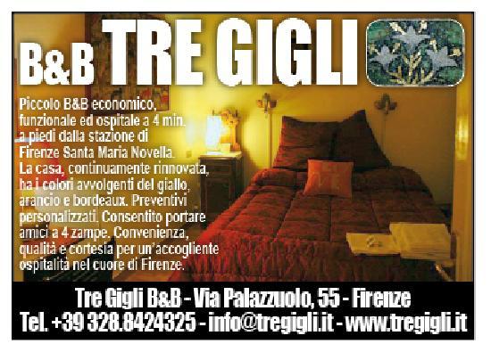 B&B Tre Gigli Firenze : Tre Gigli BB convenienza,qualità,cortesia a Firenze