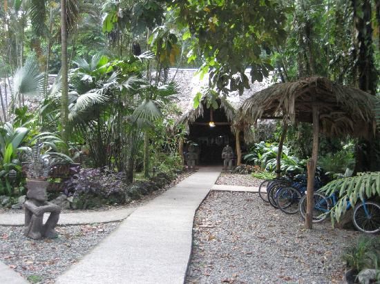 Cariblue Beach & Jungle Resort: The front entrance of Cariblue