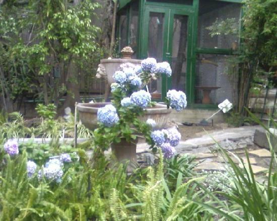 The Secret Garden Bed and Breakfast: Partial Garden View