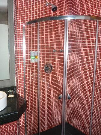 The Park Residence @ Bangkok: Corner Shower - rather cramped and small but still manageable