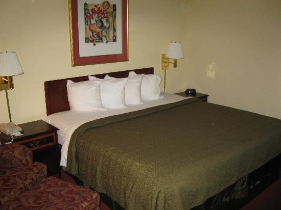 Quality Inn Wilmington: King Bed
