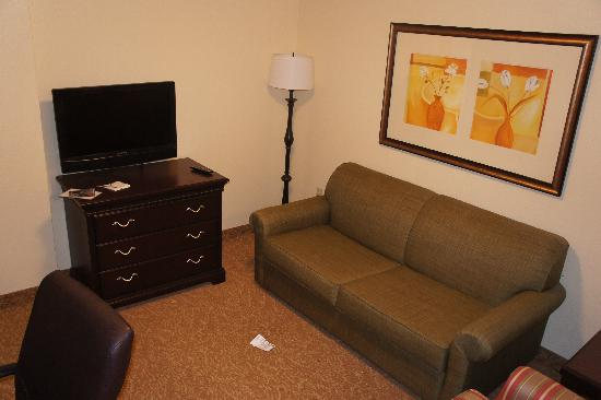 Country Inn & Suites By Carlson, Kansas City at Village West: Living Room