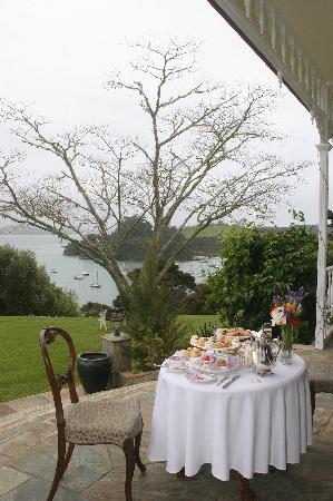 Matauwhi Bay Manor: Excellent cuisine