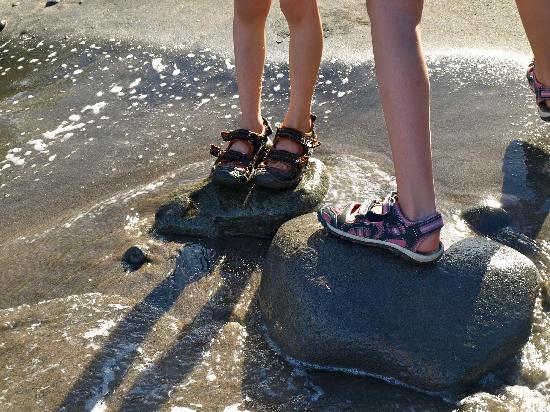 Secret Bay : Kids enjoying the warm water