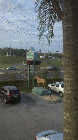 Country Inn & Suites By Carlson, Ocala: View from the front window