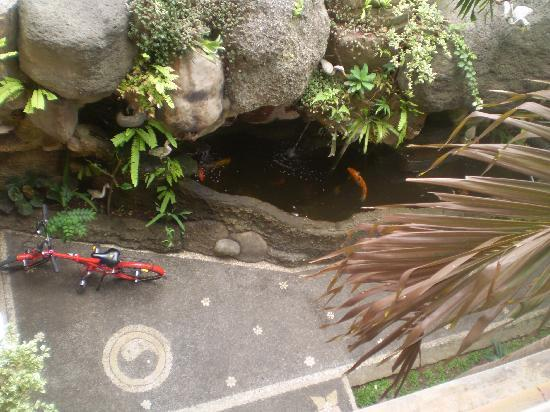 Bali Springs Cottages: The fish pond from our balcony