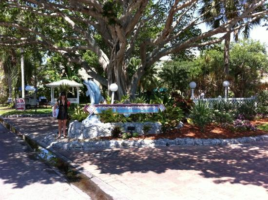 Tropical Beach Resorts: Tropical Shores 5-2011