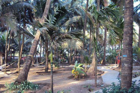 Karpewadi Agrotel: Inside view of resort