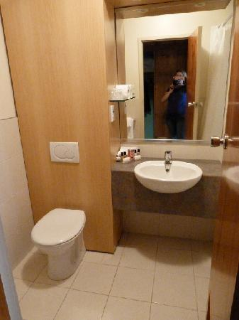 Copthorne Hotel Rotorua: Bathroom more modern than room itself