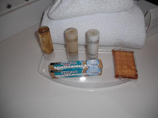 Royal Dearborn Hotel & Convention Center: Bathroom toiletries