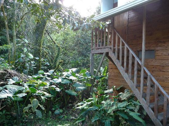 Nidia Lodge: entrée des chambres au Nidia