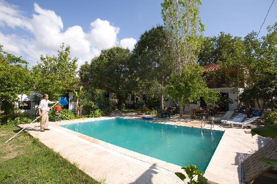 Jenny's House: Jennys House swimming pool!