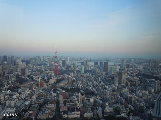 มินาโตะ, ญี่ปุ่น: 東京シティービュー