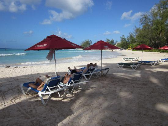 Southern Surf Beach Apartments: Praia em frente ao hotel