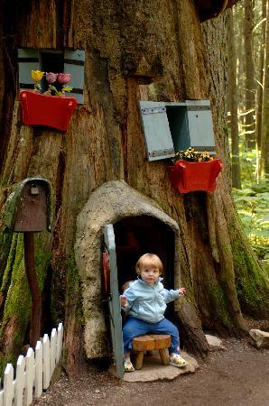 The Enchanted Forest: Child in Stump House