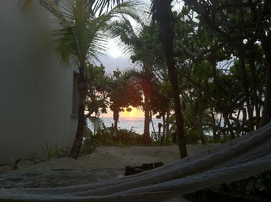 Las Ranitas Eco-boutique Hotel : view from my room with my hammock