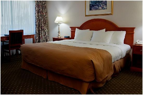 Clarion Hotel & Conference Centre: One King Bed Room