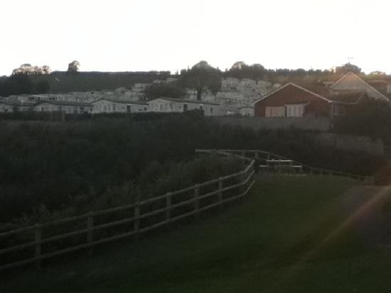 Ladram Bay Holiday Park: Well developed site