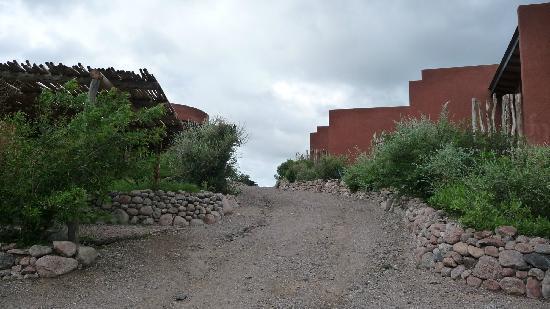 Terrazas del Uritorco: Calle de acceso al Hotel, bien agreste