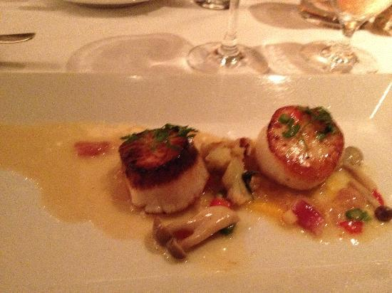 Restaurant Gary Danko: Appetizer - Perfectly Seared Scallops
