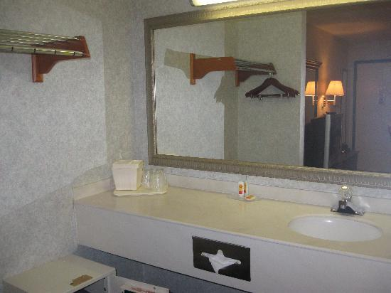 Econo Lodge Florence: Bathroom