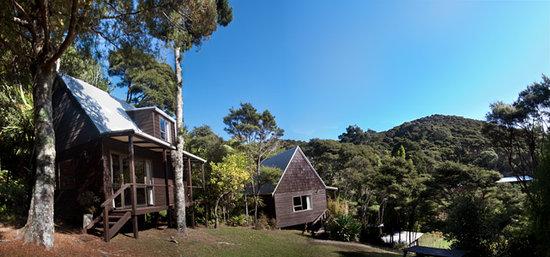 The Stray Possum Lodge