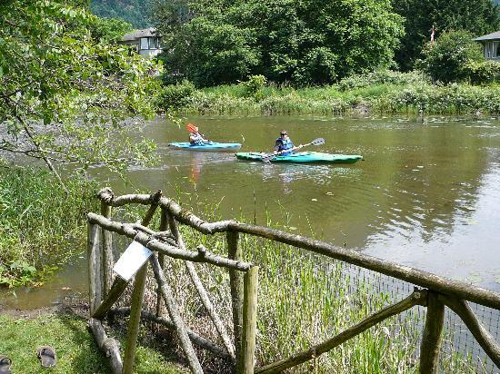 Harrison Heritage House and Cottages: ...kayaks for two...