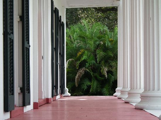 Madewood Plantation House: the front portico in morning
