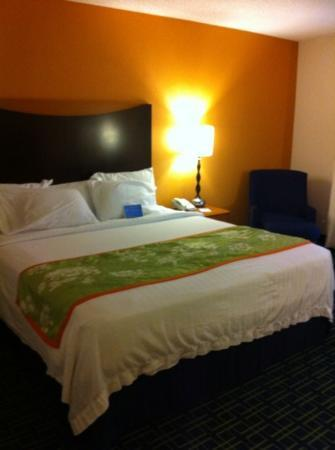 Fairfield Inn & Suites Chesapeake: uncomfortable bed with thin comfort