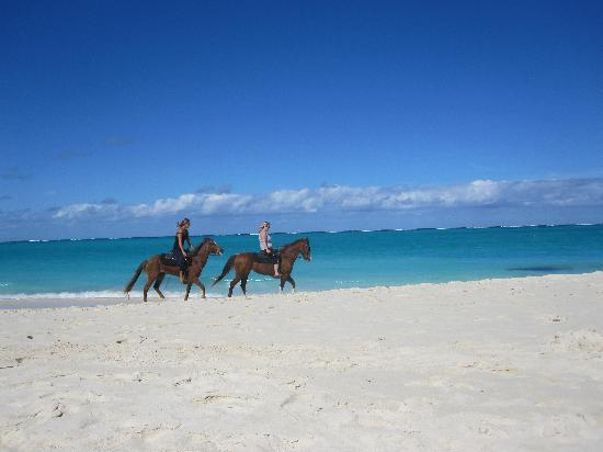 Alexandra Resort: Riding along the beach