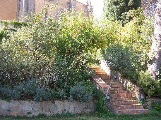 Hotel Jardin de la Muralla: Garden