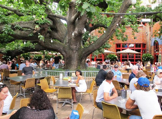 The Oaks Hotel Bar & Grill: Outdoor seating of The Oak
