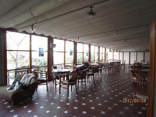 Resort Hotel Moana Coast: テラス席?
