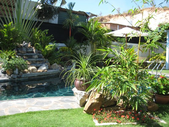 Ever Green Guesthouse: The pool, garden and the waterfall (from one of the sundbeds).