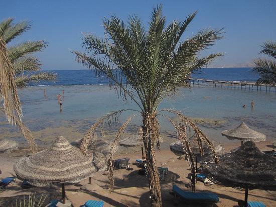 Tamra Beach: visione della spiaggia dal bar