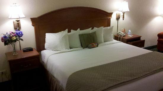 Days Inn Port Charlotte: Bed