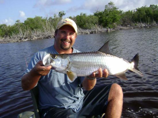 Average tarpon in the lake picture of tarpon lake for Lake tarpon fishing