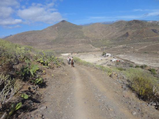 Centro hípico Horse Riding Adventures in Tenerife: Mountain hack