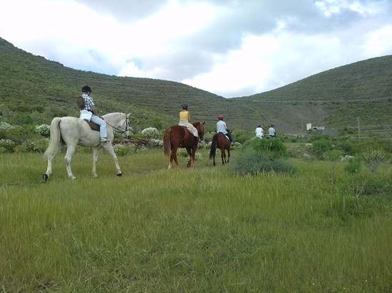 Centro hípico Horse Riding Adventures in Tenerife: hacking out in the countryside