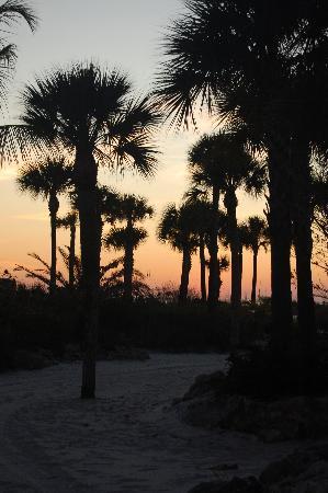 Tropical Beach Resorts: Full moon evening
