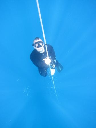 Blue Ocean Free Divers - Day Course : open water