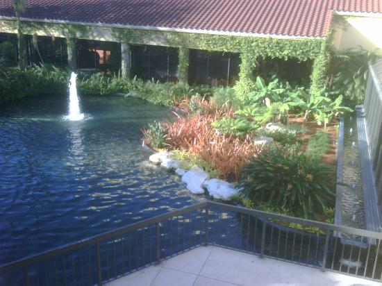 Shula's Hotel & Golf Club: Another view of the pond area outside the main lobby