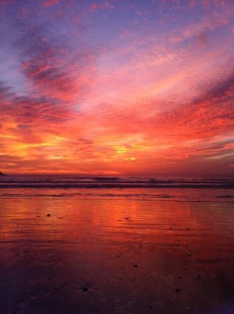 Costa de Oro Beach Hotel: dec 25/11
