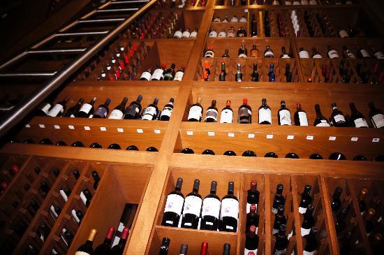 Sagrantino: Cava de vinos